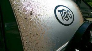 T@G teardrop